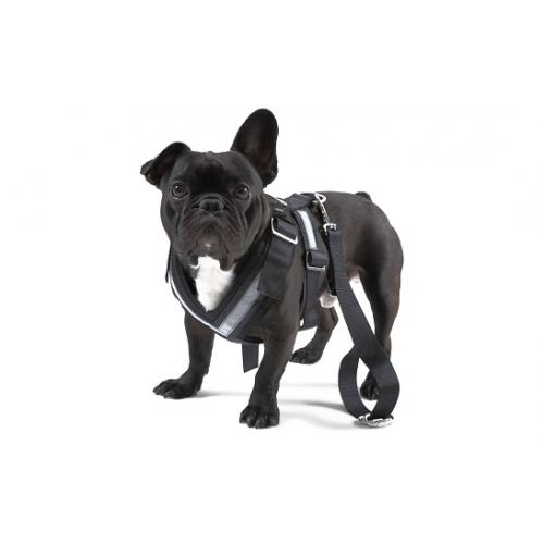 TURVAVÖÖ koerale, suurus